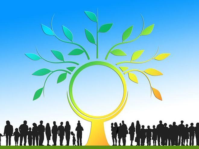 cursos de energias renovaveis onu gratuito
